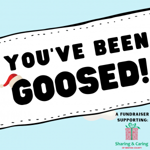 You've Been Goosed